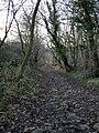 Bassleton Lane - geograph.org.uk - 1094622.jpg