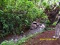 Batoufam, Cameroon - panoramio (2).jpg