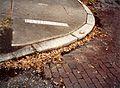 Bayou Road Curb 1991.jpg