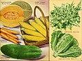 Beckert's garden annual - 1949 (1949) (20350930082).jpg