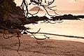 Beleza do Canto da Praia de Itaipu.jpg