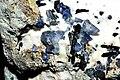 Benitoite, neptunite, joaquinite-(Ce), natrolite, serpentine.jpg
