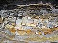 Bentonite (105.6 Ma) in the Dakota Sandstone (Lower Cretaceous) (Dinosaur Ridge, Colorado, USA) 3 (21586824094).jpg