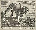 Bergachtig landschap met een paard, lopend op een heuvel. van voren gezien. NL-HlmNHA 1477 53011518.JPG