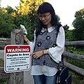 Beware of Coyote (27976665596).jpg