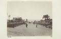 Bild från familjen von Hallwyls resa genom Egypten och Sudan, 5 november 1900 – 29 mars 1901 - Hallwylska museet - 91738.tif