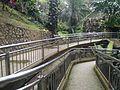 Bird Park in Kuala Lumpur (Malaysia) (22).jpg