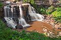 Blackwater Falls - HDR (14862364609).jpg