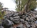 Blahovisnyi, Cherkasy, Cherkas'ka oblast, Ukraine - panoramio - юра запеченко (2).jpg