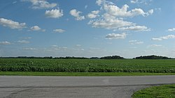 Fields in central Blanchard Township