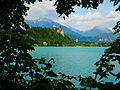 Bled Castle (from Bled Island) (14259912533).jpg