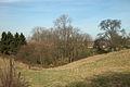 Blick auf das Forstbach-Quellgebiet.jpg