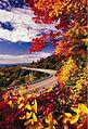 Blue Ridge Parkway in Fall.jpg