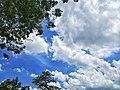 Blue Sky Of Bangladesh.jpg