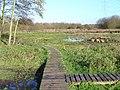 Boardwalk in Riverside Park - geograph.org.uk - 288882.jpg