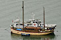 Boats below Long Wood, Kingswear.jpg