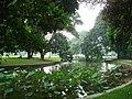 Bogor Botanical Gardens Java38.jpg