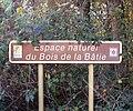 Bois de La Bâtie automne 2017 01.jpg