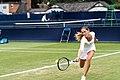 Bojana Jovanovski Petrovic (42576335122).jpg