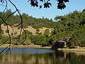 Bon Tempe lake (294923317).jpg