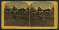 Booth's flower garden at Minnehaha, by M. Nowack.png