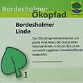 Bordesholmer Linde 01.jpg
