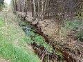 Bornriethmoor Entwässerungsgraben 20210508.jpg