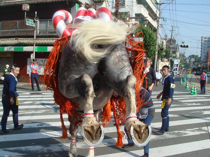 File:Boshita-2009.921-Higo-chiyukai.jpg