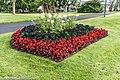 Botanic Gardens In Glasnevin (Dublin) (7951826378).jpg