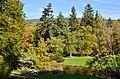 Botanischer Garten der Universität Zürich 2012-10-19 14-21-46.JPG