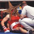 Boxing barnstar.png