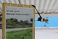 Brest 2012 Bretagne Vivante100.JPG