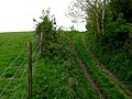Bridle Track on Combe Hill - geograph.org.uk - 1308530.jpg