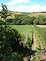 Bridleway across Torr Brook valley - geograph.org.uk - 227931.jpg