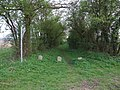 Bridleway to Sandon at Gannock Green - geograph.org.uk - 403422.jpg