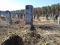 Brody cemetery 01.jpg