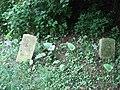 Broken gravestones in the African Jackson Cemetery.jpg