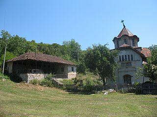 Bučje (Knjaževac) Village in Zaječar District, Serbia