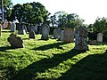 Burial ground, Loughwood Meeting House - geograph.org.uk - 440468.jpg