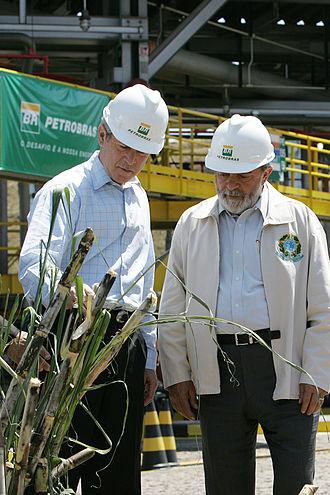 Biofuel - U.S. President George W. Bush looks at sugar cane, a source of biofuel, with Brazilian President Luiz Inácio Lula da Silva during a tour on biofuel technology at Petrobras in São Paulo, Brazil, 9 March 2007.