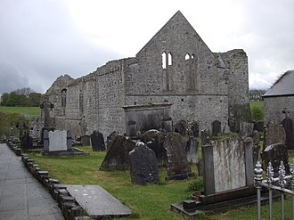 Buttevant Franciscan Friary - Buttevant Friary