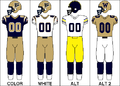 CFL Jersey WPG 2009.png