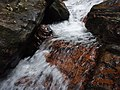 Cachoeira na trilha da Praia Brava - panoramio.jpg