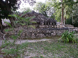 Calakmul Biosphere Reserve - Image: Calakmul 2.02.06.w