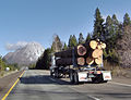 California Log Truck.jpg