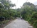 Calle allende - panoramio (6).jpg