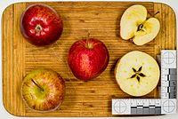 Cameo (apple) jm26291.jpg