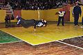 Campeonato Nacional de Cheerleaders en Piñas (9901573366).jpg