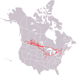 Canadian Pacific Railway Track Map Canada Canadian Pacific Railway   Wikipedia