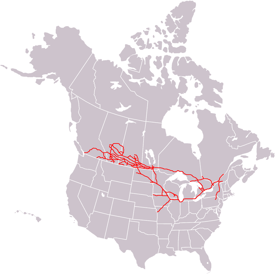 Canadian Pacific System Railmap